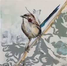 Purple Capped Wren - 8x8
