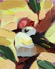 Ruby Crowned Kinglet No.11 - 6x5 - SALE PRICE