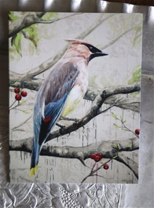 Mini Print/Card - Cedar Waxwing
